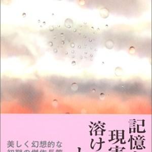 小説レビュー『余白の愛』小川洋子~幻想的な雰囲気にひたりたい時にお勧めの作品~